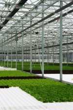 Incrementa tus rendimientos con CO2: Parte I