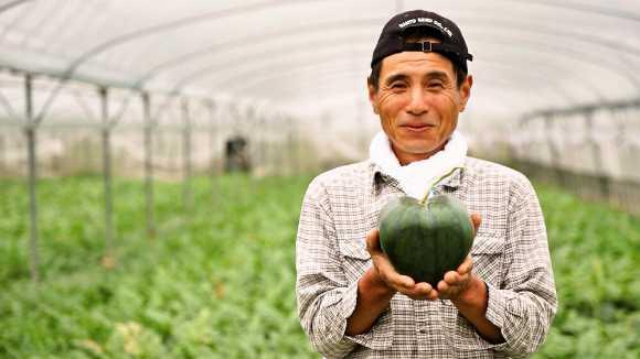 heart-watermelon