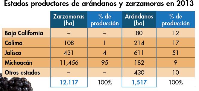 productores mexicanos de arandanos y zarzamoras