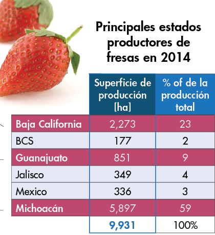 principales productores de fresas