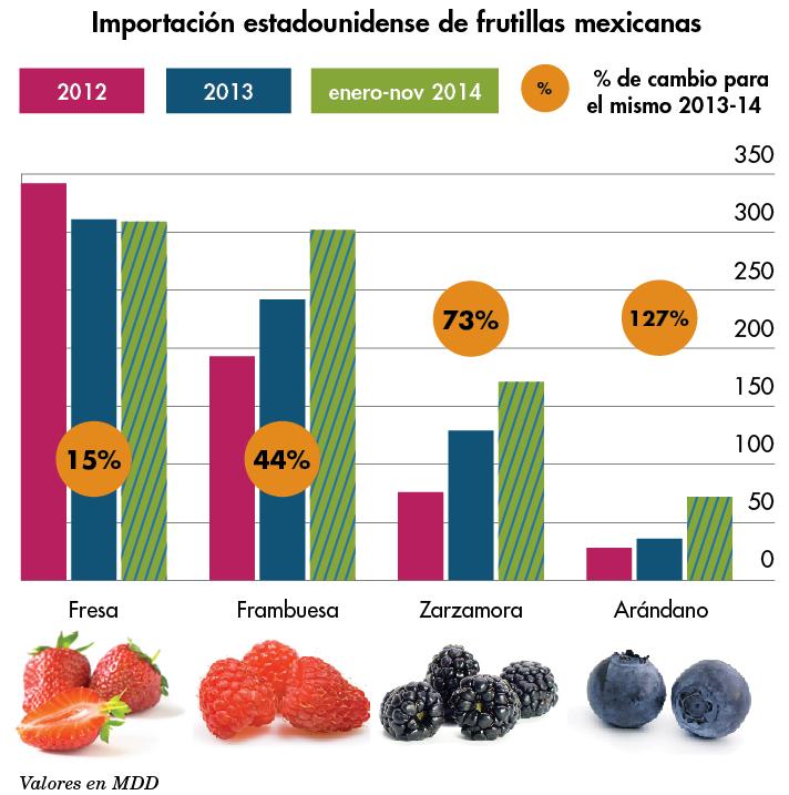 produccion de frutillas mexicanas