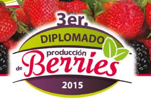 diplomado de berries