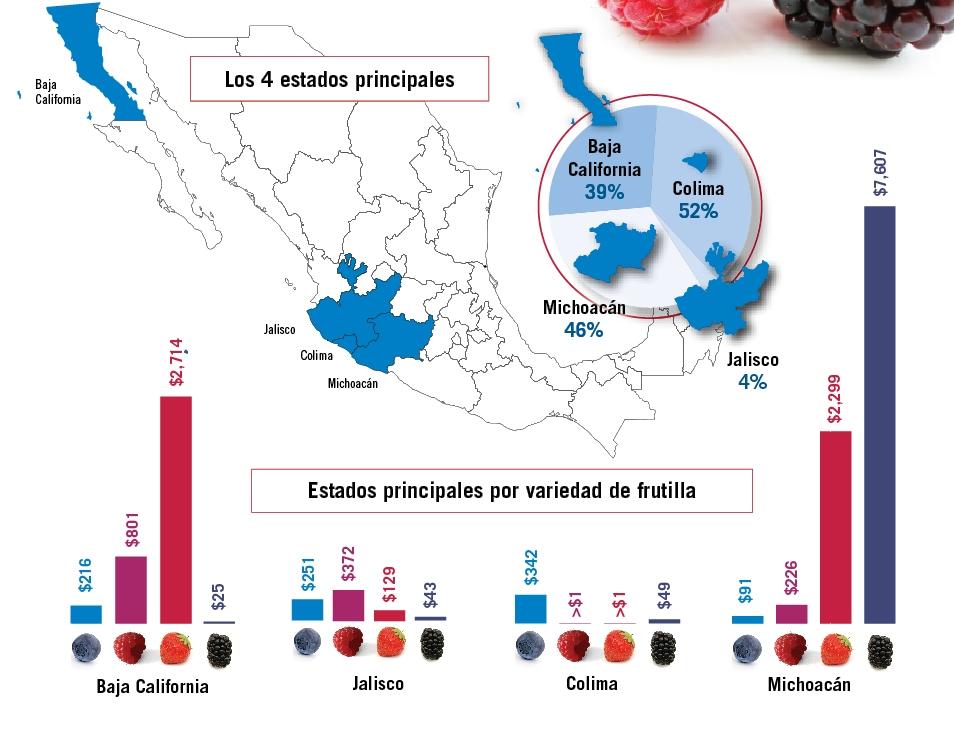 impulso de los berries mapa