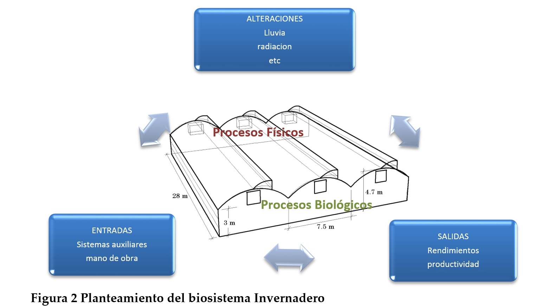 figura 2 agronica
