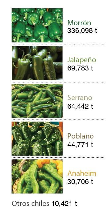 chiles jalapeños en escabeche precio
