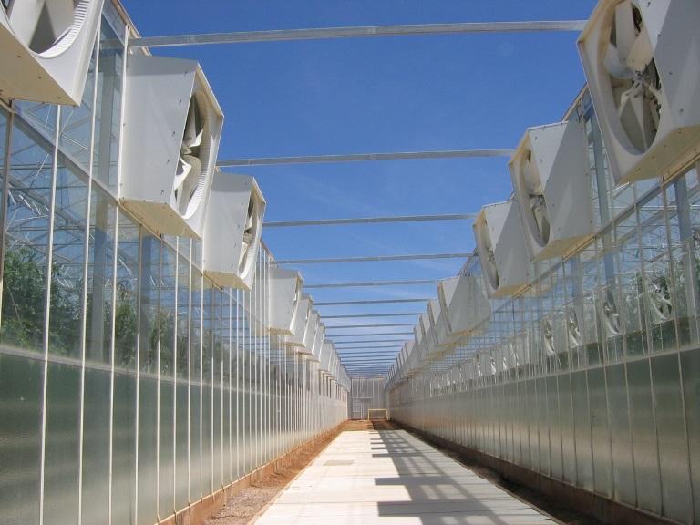 Sistema de ventiladores de escape desarrollado por CEAC/U. Arizona (Eurofresh Farms).