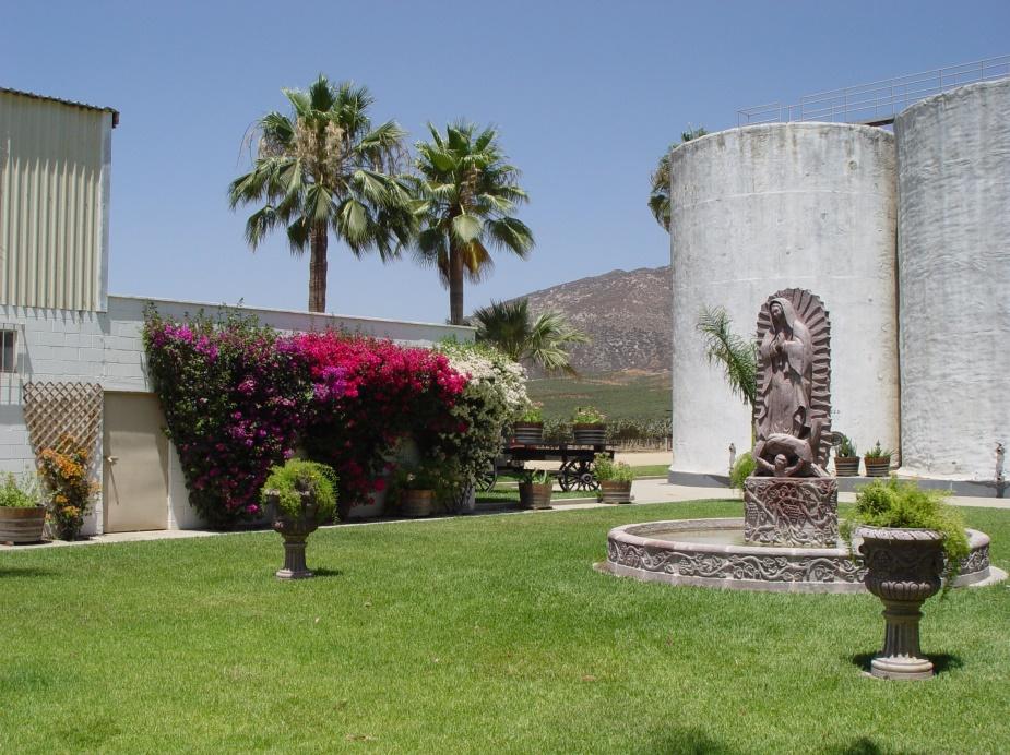 Recorrido por los Valles de Guadalupe y San Quintín, Baja California