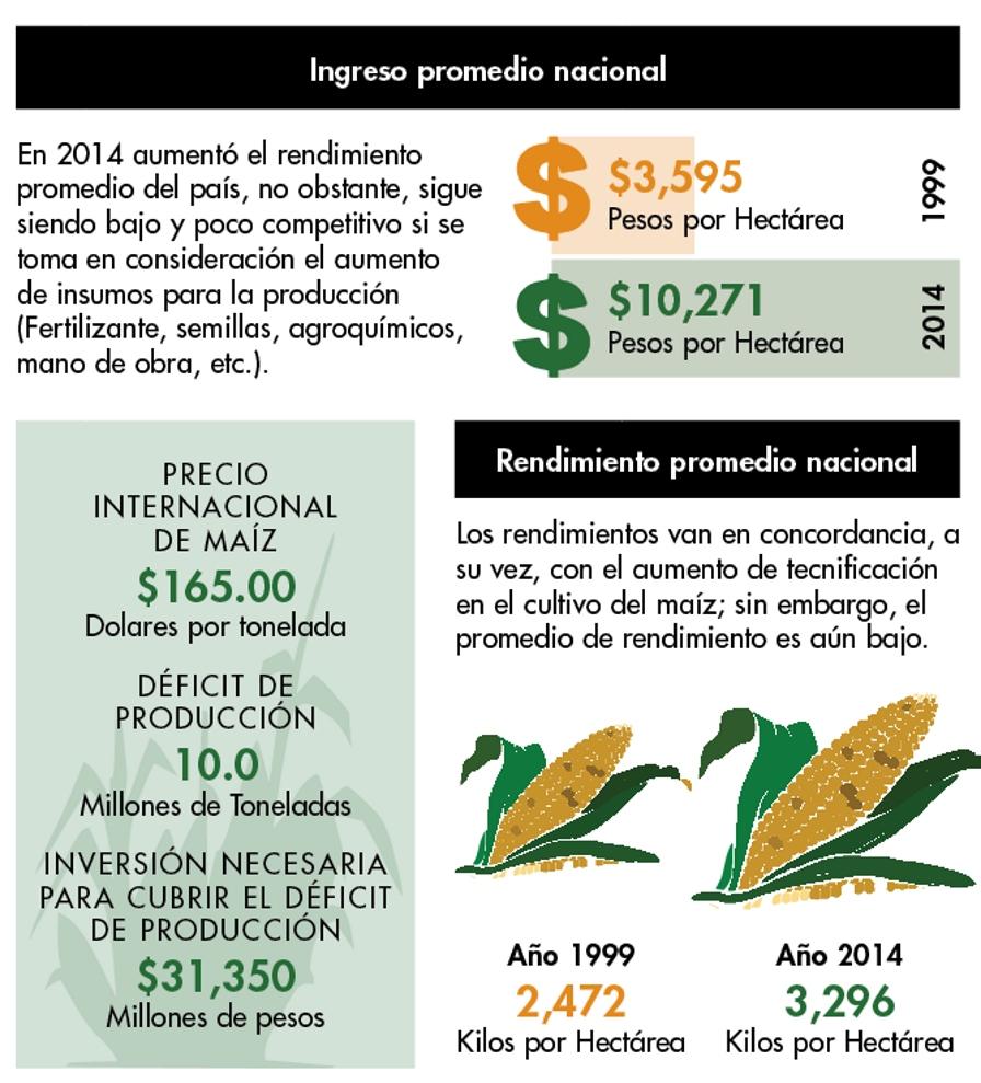 Reduciendo el déficit de producción de maíz mexicano