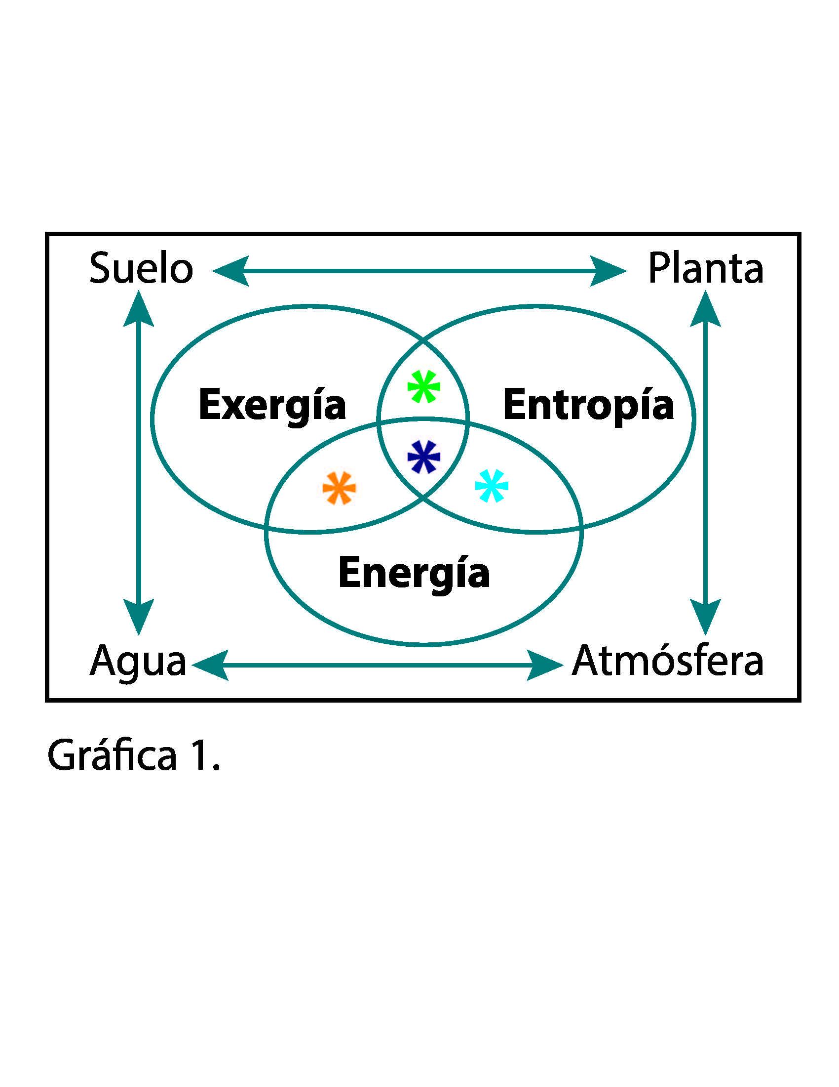 Energía, Entropía y Exergía: Nutrir en función del trabajo ejercido por la planta - Hortalizas