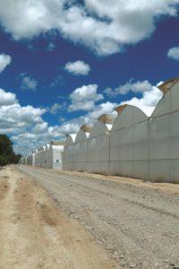Soluciones para el análisis del clima en invernadero