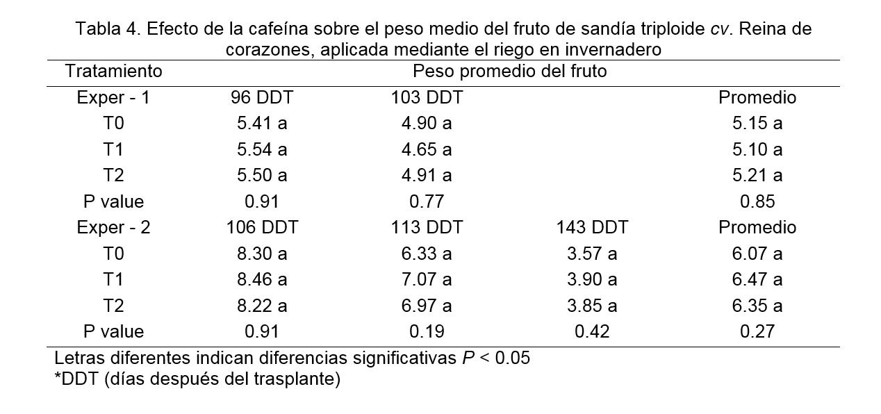 Uso de cafeína en la bioestimulación para sandía