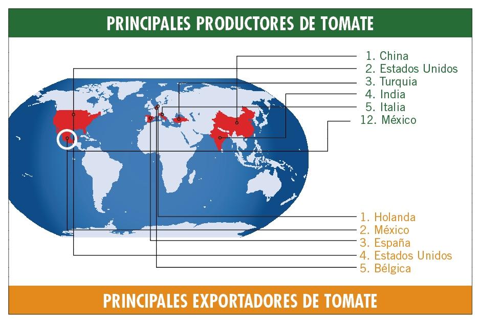 Resumen infográfico de la fuerza tomatera de México