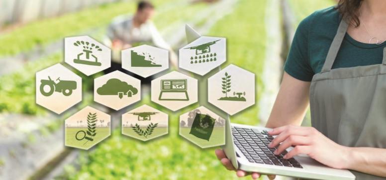 """Cultivar el negocio agrícola a través del """"Internet de las Cosas"""""""