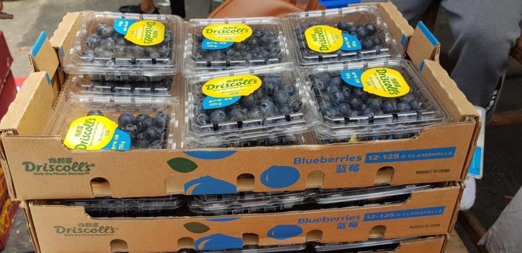 Las berries de México ponen sus miras en el mercado asiático