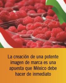 Posibilidades comerciales del mercado europeo para las berries de México