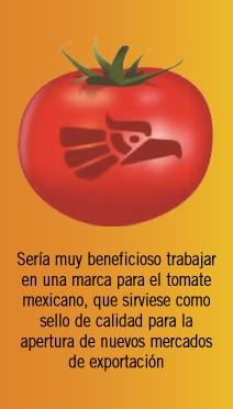¿Hacia dónde camina el tomate mexicano?