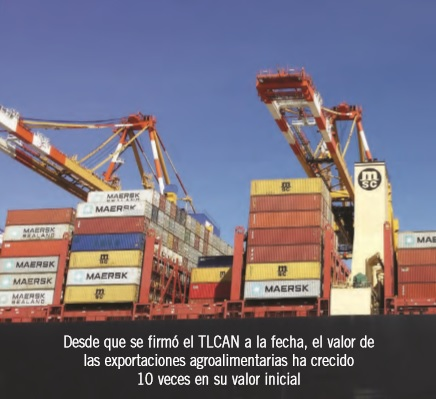 ¿Exportación o comercialización? Dos perspectivas para su análisis