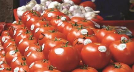 El mundo de las ventas en la agricultura (PARTE II)