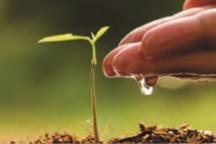Huella agrológica: el nuevo paradigma de los mercados de consumo de exportación