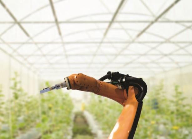 Innovaciones que revolucionan a la agricultura
