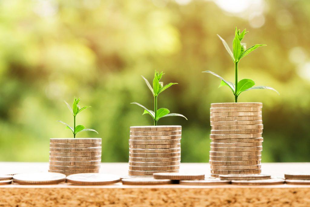 Financiamiento agroalimentario y su futuro