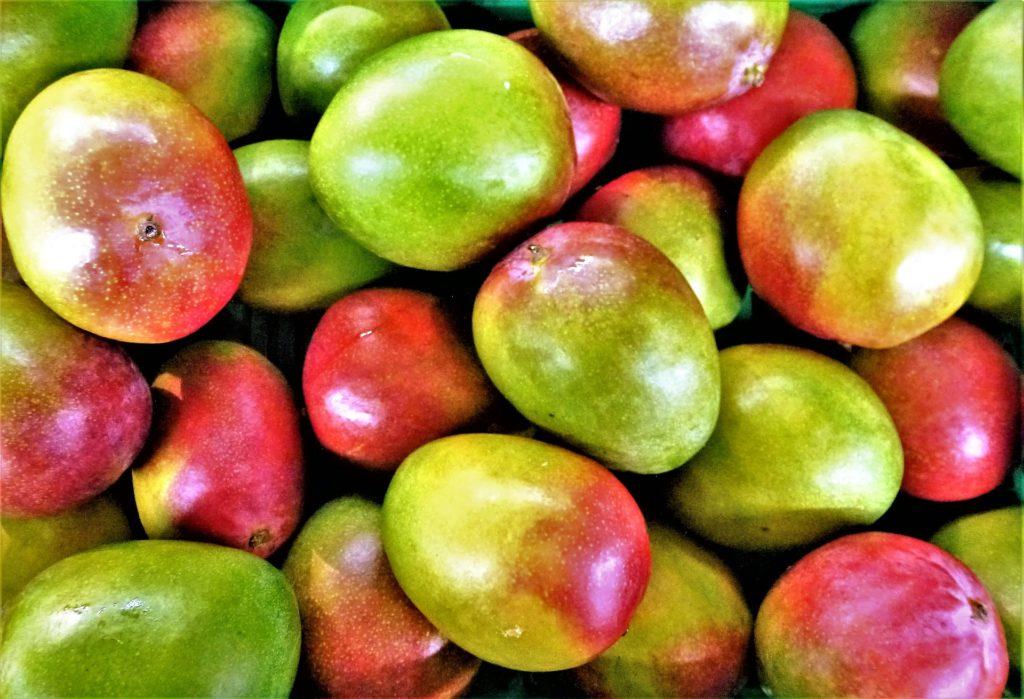 El mango de México busca su propia identidad a través de un sello de calidad