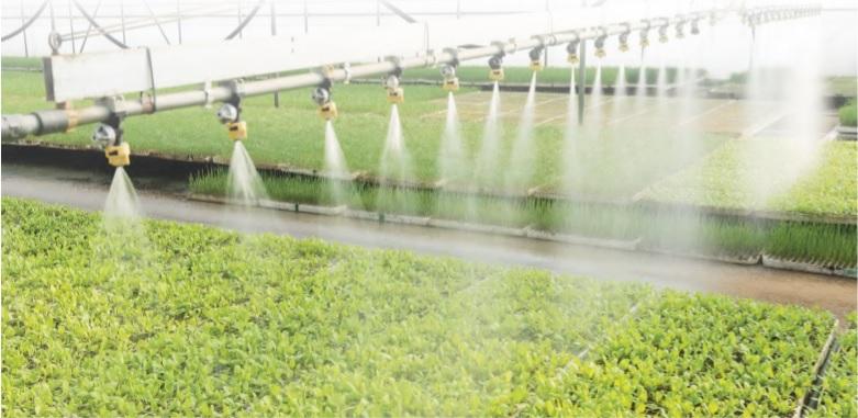 ¿Qué tan limpio está tu sistema de riego de invernadero?