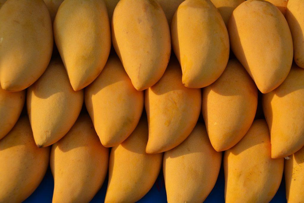 Exportarán biofungicida desarrollado en la UNAM