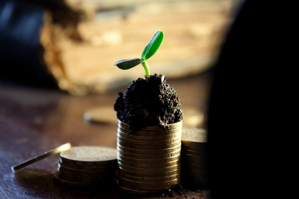 La reingeniería de la agricultura, ¿cómo hacer más con más? (1/2)