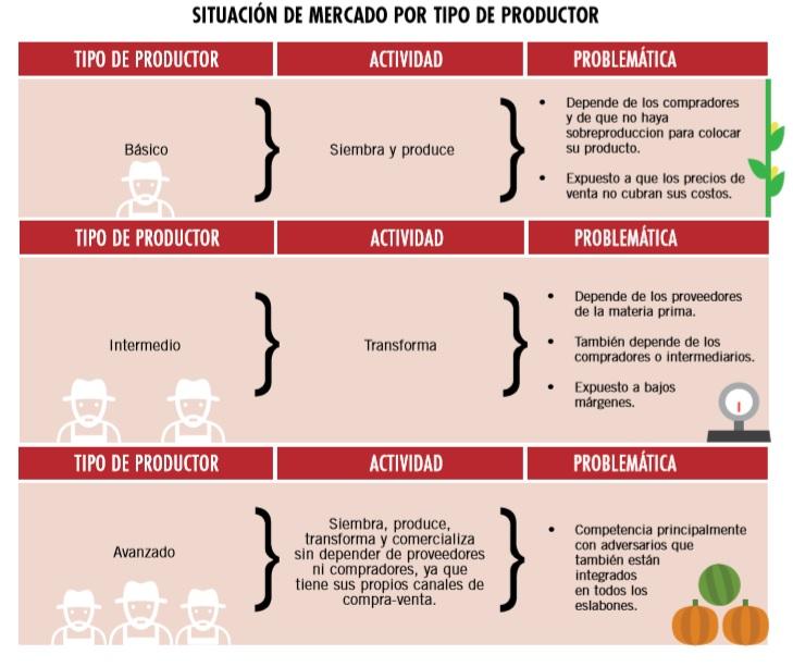 Estrategias de mercadotecnia en la agricultura (3/3)