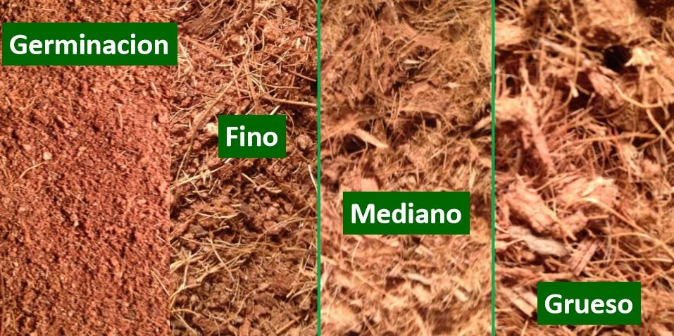 Mitos y realidades del sustrato de estopa de coco