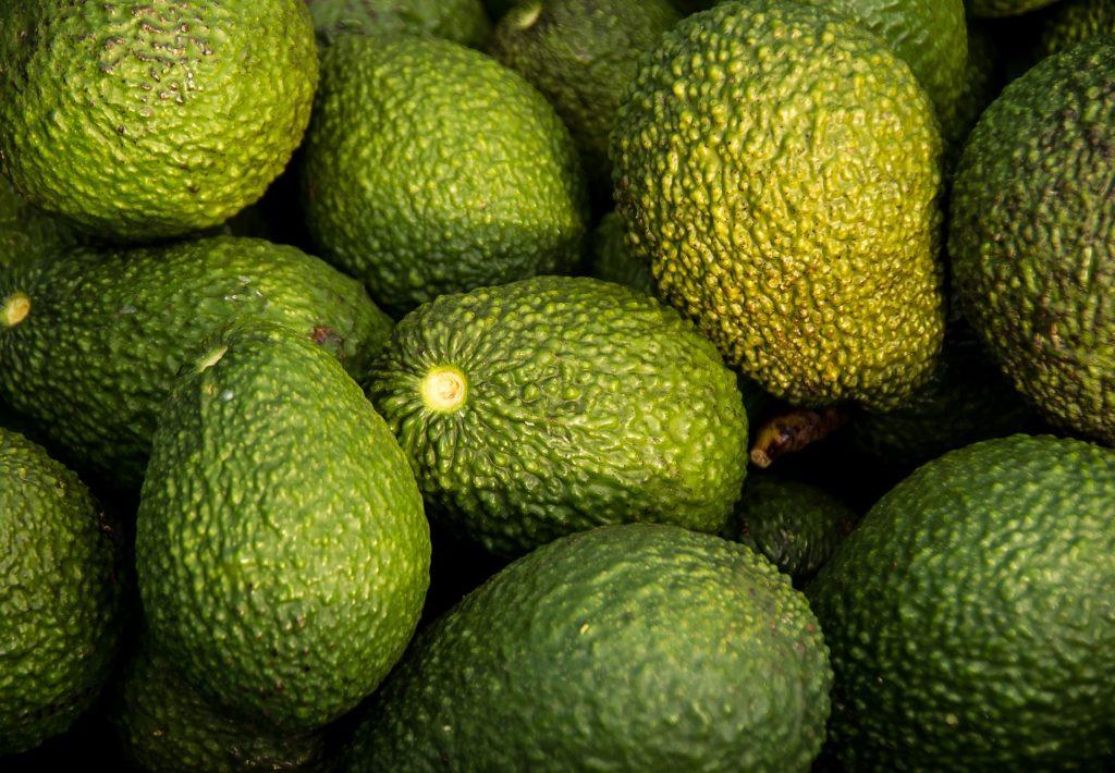 Trabajan en la apertura de 38 nuevos mercados de exportación para productos hortofrutícolas