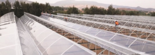 Innovación tecnológica en invernaderos pasivos