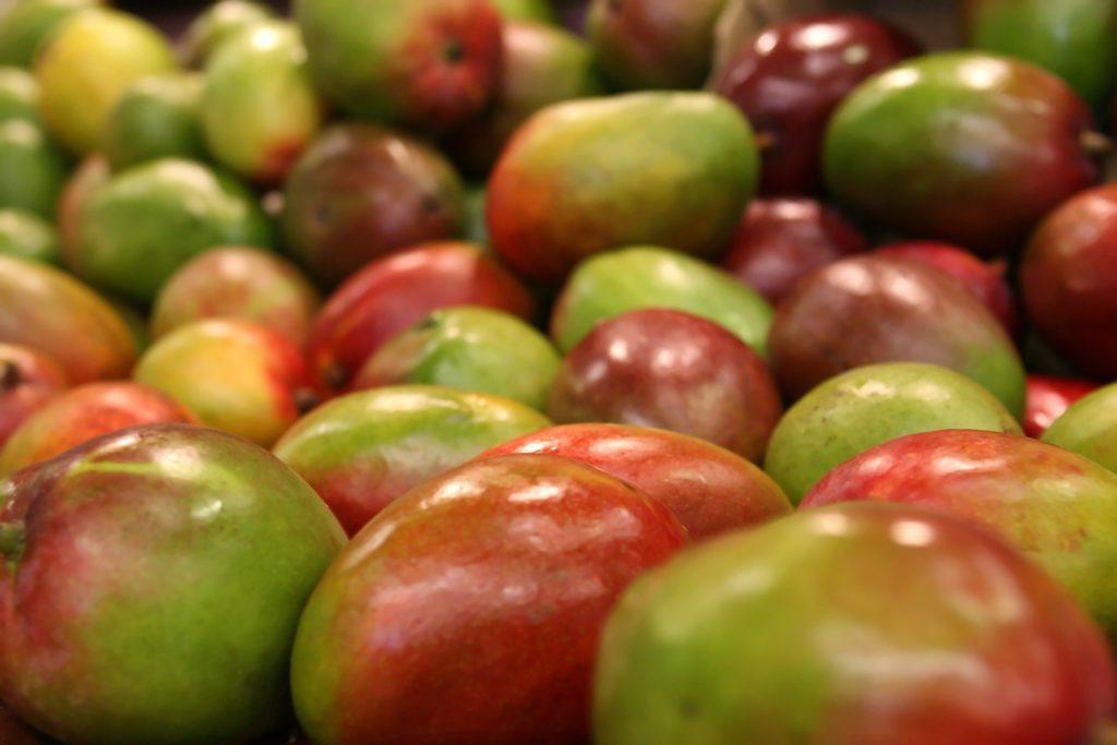 El mango de México pone sus miras en el mercado de Japón