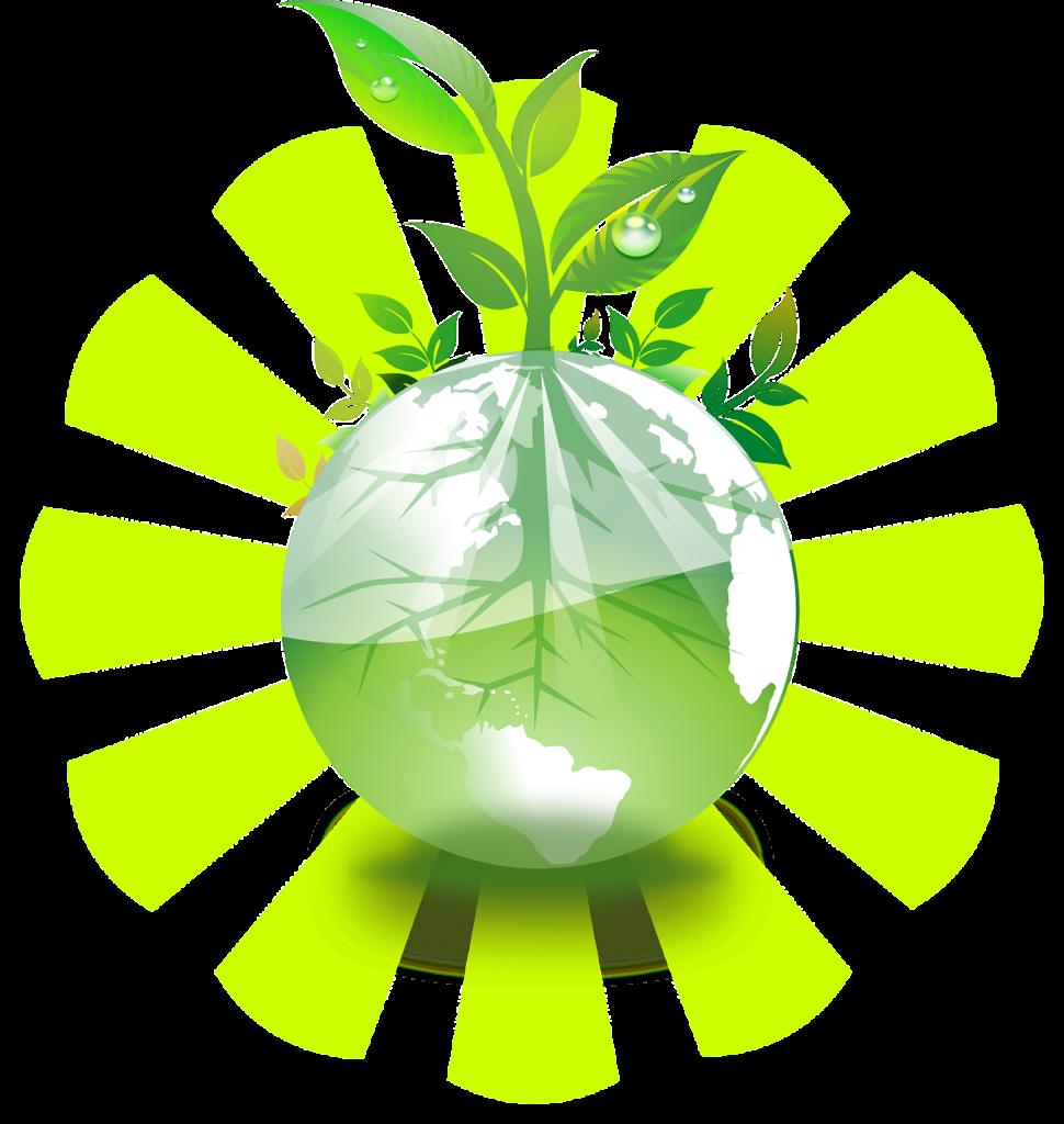 Radiografía global de la agricultura biorracional, ¿futuro o presente? (2/3)