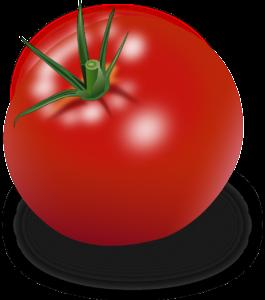 Disección del nuevo acuerdo del tomate